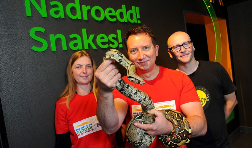 Snakes take over National Museum Cardiff