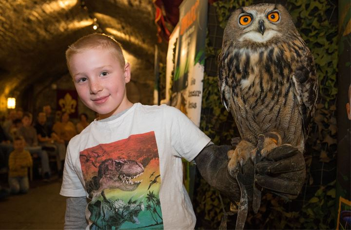 Animal Encounters at Cardiff Castle