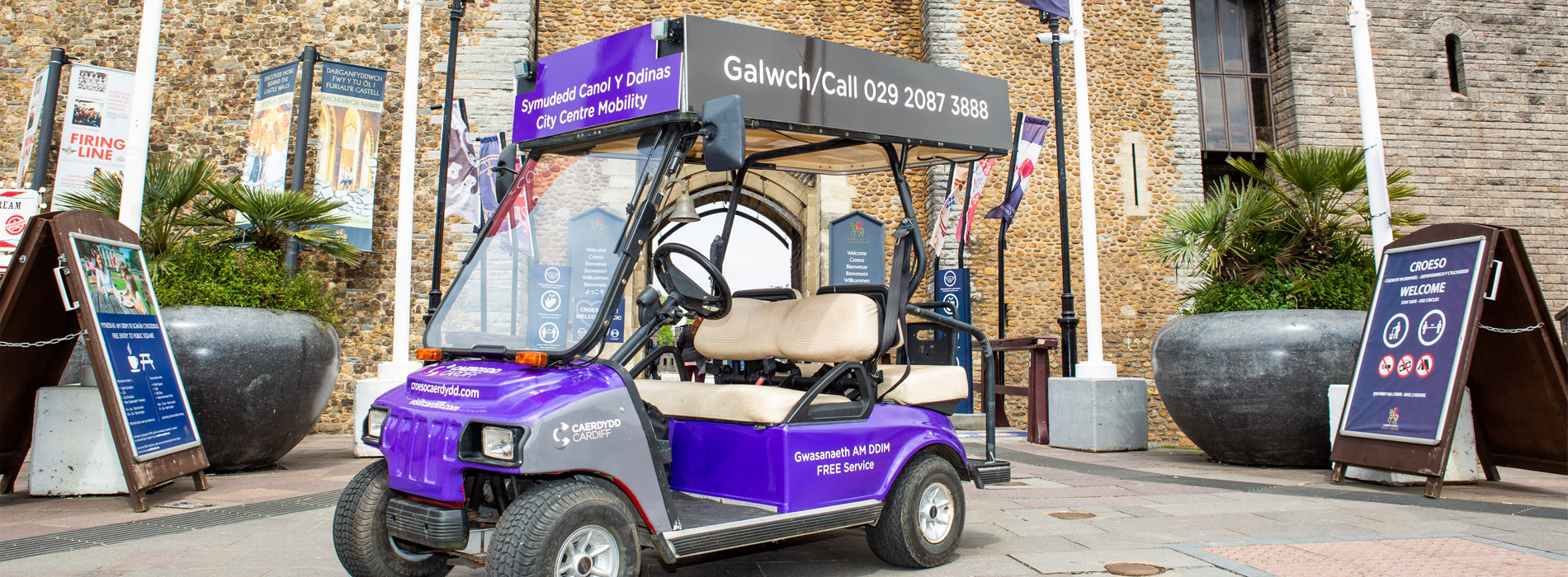 Cardiff Mobility Buggy